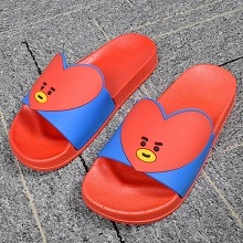 BTS star plastic shoes slippers a pair
